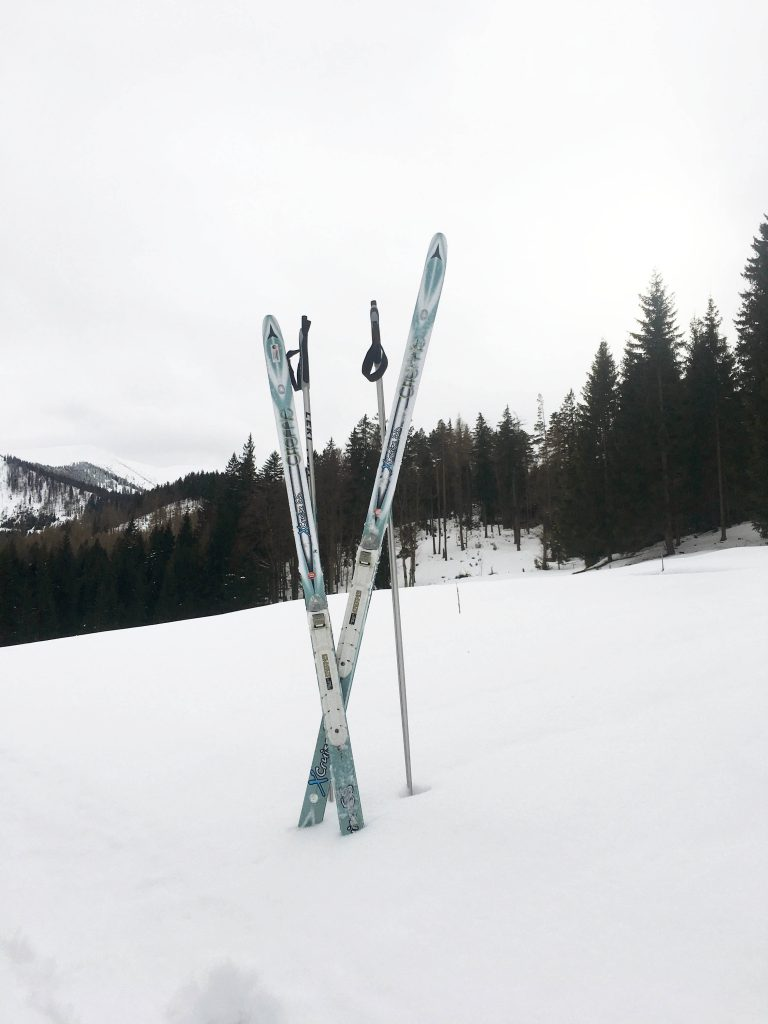 The equipment – skis and sticks.