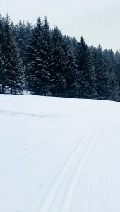 The loipe – a cross-country skiing track
